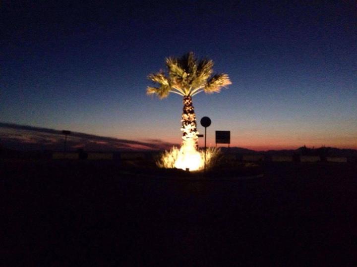 Έτσι φωτίζονταν τη νύχτα οι φοίνικες του Μόντε Σμιθ.   Πριν οι γνωστοί άγνωστοι να... ξηλώσουν τους προβολείς.