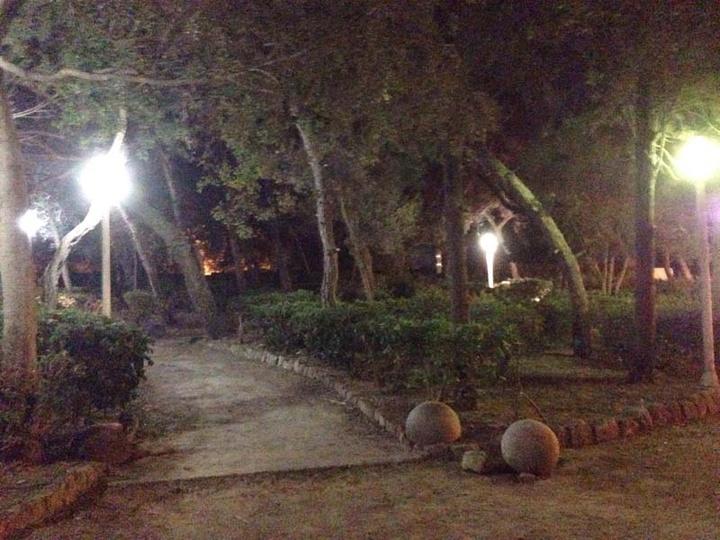 Το πάρκο Δημοκρατίας, όπως φωτίζεται πλέον σε πολλά σημεία του