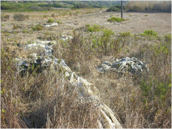 Εικόνα 3 Εγκατάλειψη πλαστικών, μετά την καλλιέργεια