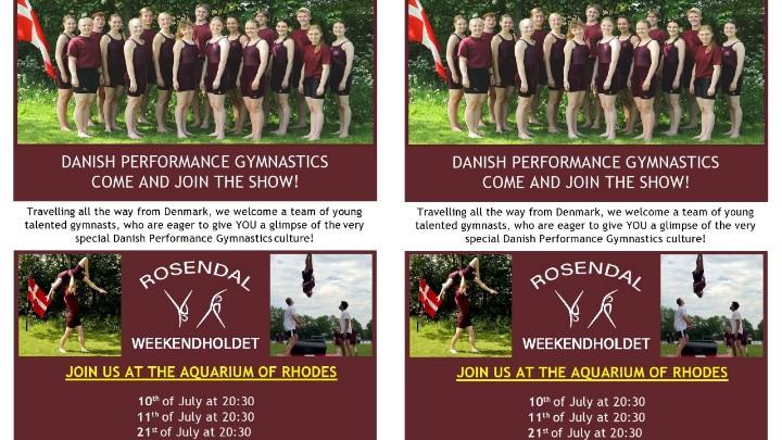 Performances by the gymnastics team